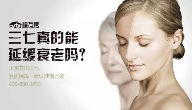 文山三七延缓衰老